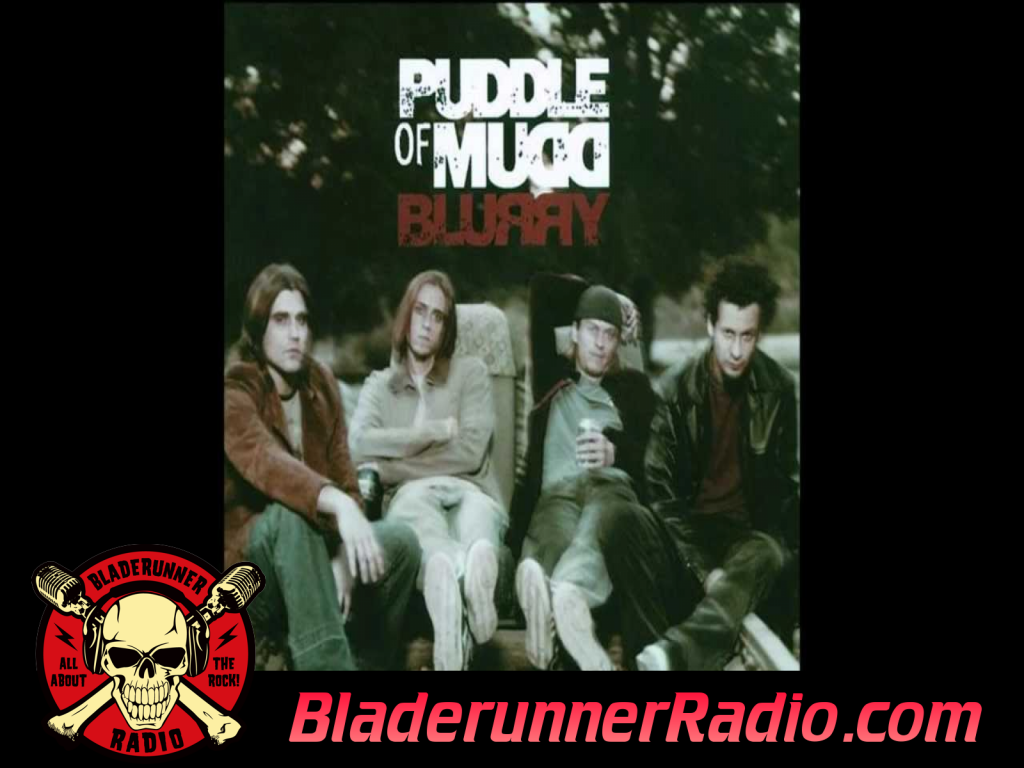 Puddle Of Mudd - Everybody Wants You (image 2)