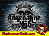 Adrenaline Mob - mob rules - pic 8 small