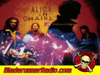 Alice In Chains - rooster unplugged - pic 1 small