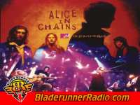 Alice In Chains - rooster unplugged - pic 2 small