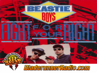 Beastie Boys - fight for your right to party - pic 1 small