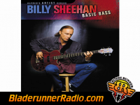 Billy Sheehan - a tower in the sky - pic 9 small