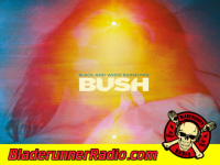 Bush - mad love b  vox - pic 1 small