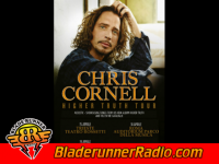 Chris Cornell - higher truth - pic 8 small