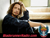 Chris Cornell - through the window - pic 1 small