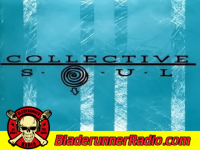 Collective Soul - disciplined breakdown - pic 2 small
