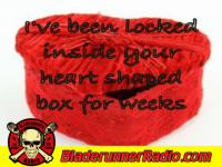 Evanescense - heart shaped box - pic 2 small