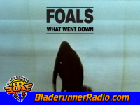 Foals - what went down - pic 1 small