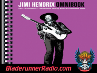 Jimi Hendrix - turn to stone - pic 5 small