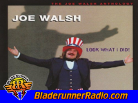 Joe Walsh - i can play that rock amp roll - pic 3 small