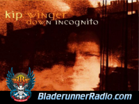 Kip Winger - down incognito - pic 0 small