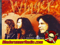 Kip Winger - down incognito - pic 4 small