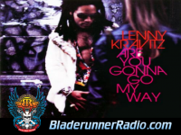Lenny Kravitz - are you gonna go my way - pic 0 small