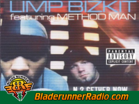 Limp Bizkit - break stuff - pic 1 small