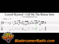 Lynyrd Skynyrd - call me the breeze - pic 4 small