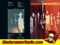 Lynyrd Skynyrd - gimme back my bullets - pic 5 small
