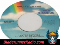 Lynyrd Skynyrd - i know a little - pic 3 small