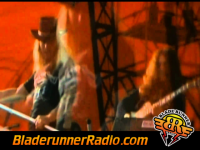 Lynyrd Skynyrd - saturday night special - pic 2 small