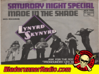 Lynyrd Skynyrd - saturday night special - pic 6 small