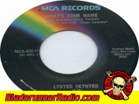Lynyrd Skynyrd - whats your name - pic 3 small