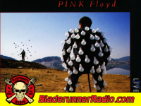 Pink Floyd - the dogs of war - pic 6 small