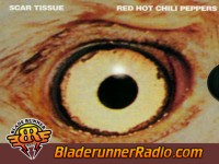 Red - hot chili peppers scar tissue - pic 0 small