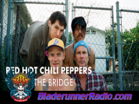 Red - hot chili peppers under the bridge - pic 3 small