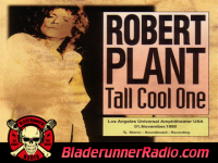 Robert Plant - tall cool one - pic 0 small