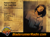 Robert Plant - tall cool one - pic 4 small