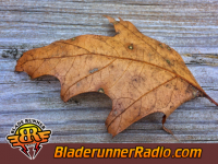 Seasons After - weathered and worn - pic 5 small