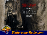 Shinedown - cut the cord - pic 4 small