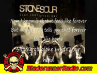 Stone Sour - through glass - pic 4 small