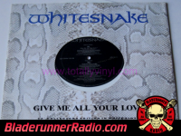 Whitesnake - give me all your love - pic 3 small