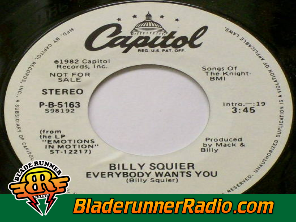 Billy Squier - Everybody Wants You (image 5)