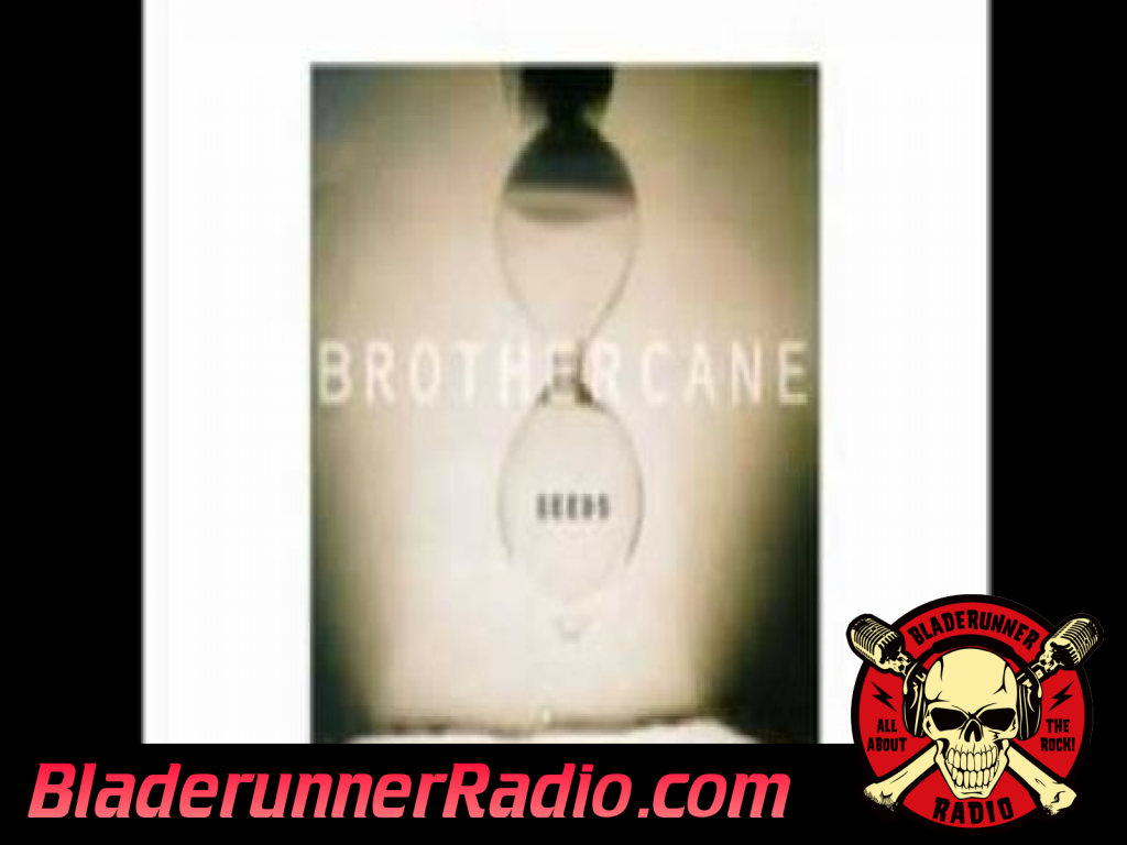 Brother Cane - And Fools Shine On (image 6)