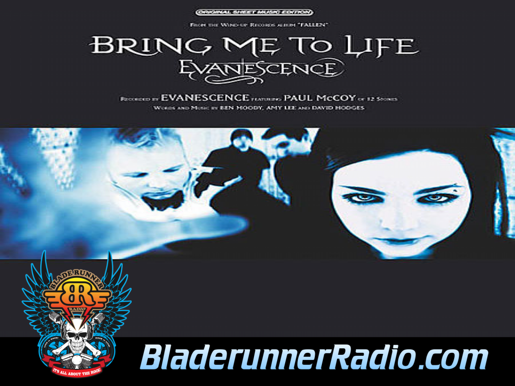 Evanescence - Bring Me To Life (image 5)