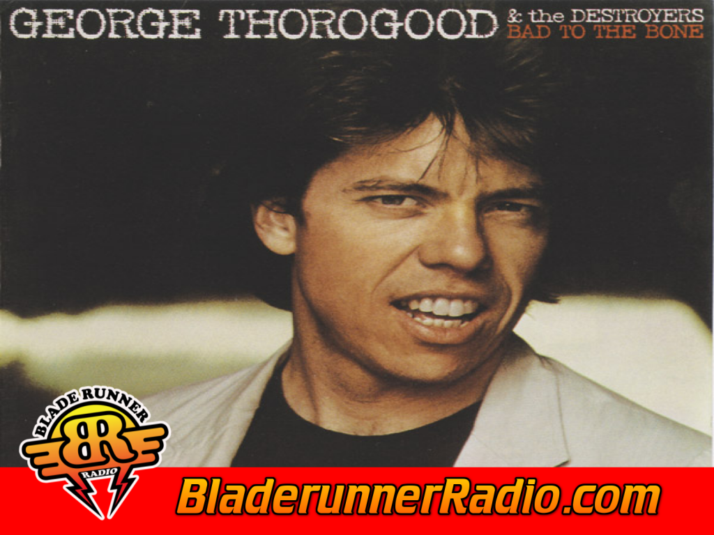 George Thorogood - You Talk Too Much (image 2)