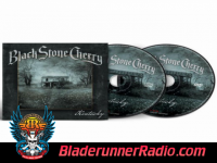 Black Stone Cherry - cheaper to drink alone b  vox - pic 4 small