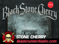 Black Stone Cherry - in our dreams - pic 0 small