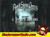 Black Stone Cherry - in our dreams - pic 1 small