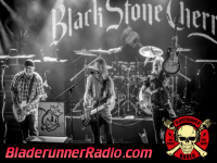 Black Stone Cherry - in our dreams - pic 4 small