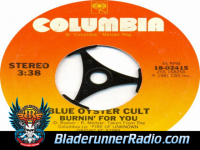 Blue Oyster Cult - burnin for you - pic 8 small