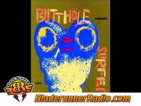 Butthole Surfers - who was in my room last night - pic 2 small
