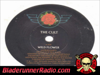 Cult - wild flower - pic 3 small