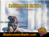 David Lee Roth - goin crazy - pic 0 small
