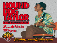 Hound Dog Taylor - phillips theme - pic 3 small