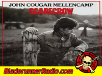 John Mellencamp - rain on the scarecrow - pic 0 small