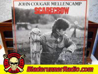 John Mellencamp - rain on the scarecrow - pic 8 small