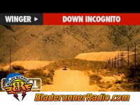 Kip Winger - down incognito - pic 2 small
