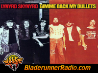 Lynyrd Skynyrd - gimme back my bullets - pic 0 small